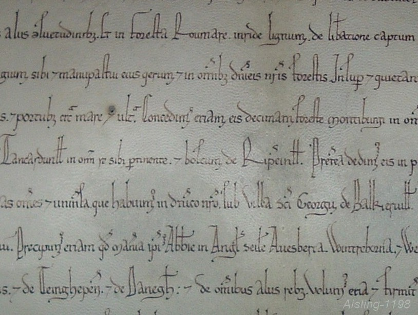 Reconstitution Aisling-1198 d'une charte de St Georges de Boscherville